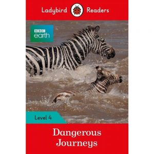LIVRO: DANGEROUS JOURNEYS